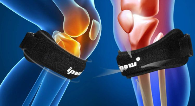 Support to the kneecap