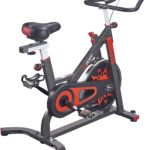 VIGBODY Exercise Bike Indoor Cycling Bicycle Stationary Bikes